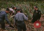Image of recovery of LB-7 aircraft debris Bluefields Nicaragua, 1969, second 15 stock footage video 65675072642
