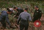 Image of recovery of LB-7 aircraft debris Bluefields Nicaragua, 1969, second 16 stock footage video 65675072642