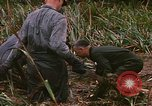 Image of recovery of LB-7 aircraft debris Bluefields Nicaragua, 1969, second 50 stock footage video 65675072642