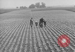 Image of cannery labors strike Racine Wisconsin USA, 1938, second 13 stock footage video 65675072649