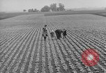 Image of cannery labors strike Racine Wisconsin USA, 1938, second 14 stock footage video 65675072649
