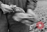 Image of cannery labors strike Racine Wisconsin USA, 1938, second 18 stock footage video 65675072649