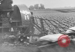Image of cannery labors strike Racine Wisconsin USA, 1938, second 19 stock footage video 65675072649