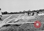 Image of Reinhold Tilling Germany, 1930, second 43 stock footage video 65675072677