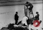 Image of Reinhard Tilling Germany, 1931, second 8 stock footage video 65675072680