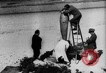 Image of Reinhard Tilling Germany, 1931, second 9 stock footage video 65675072680