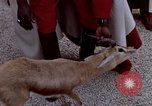 Image of palace guards Tunis Tunisia, 1959, second 34 stock footage video 65675072709