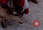 Image of palace guards Tunis Tunisia, 1959, second 37 stock footage video 65675072709