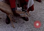 Image of palace guards Tunis Tunisia, 1959, second 39 stock footage video 65675072709