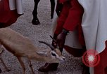 Image of palace guards Tunis Tunisia, 1959, second 41 stock footage video 65675072709