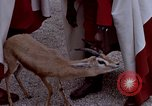 Image of palace guards Tunis Tunisia, 1959, second 42 stock footage video 65675072709