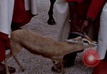 Image of palace guards Tunis Tunisia, 1959, second 43 stock footage video 65675072709