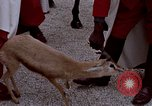 Image of palace guards Tunis Tunisia, 1959, second 45 stock footage video 65675072709
