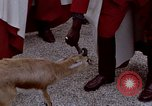 Image of palace guards Tunis Tunisia, 1959, second 46 stock footage video 65675072709