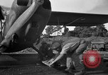 Image of L-5 Sentinel aircraft Saidor New Guinea, 1944, second 15 stock footage video 65675072745