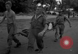 Image of L-5 Sentinel aircraft Saidor New Guinea, 1944, second 44 stock footage video 65675072746
