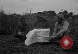 Image of Ferrying Indian soldiers in L-4 airplanes Senai New Guinea, 1944, second 20 stock footage video 65675072749