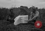 Image of Ferrying Indian soldiers in L-4 airplanes Senai New Guinea, 1944, second 23 stock footage video 65675072749