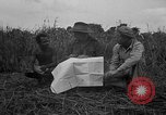 Image of Ferrying Indian soldiers in L-4 airplanes Senai New Guinea, 1944, second 24 stock footage video 65675072749