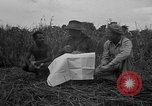 Image of Ferrying Indian soldiers in L-4 airplanes Senai New Guinea, 1944, second 26 stock footage video 65675072749