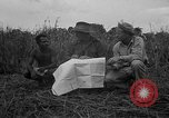Image of Ferrying Indian soldiers in L-4 airplanes Senai New Guinea, 1944, second 27 stock footage video 65675072749