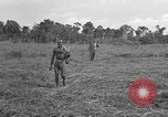 Image of Ferrying Indian soldiers in L-4 airplanes Senai New Guinea, 1944, second 31 stock footage video 65675072749