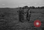 Image of Ferrying Indian soldiers in L-4 airplanes Senai New Guinea, 1944, second 45 stock footage video 65675072749