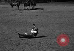 Image of cowboy United States USA, 1922, second 52 stock footage video 65675072783