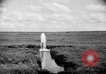 Image of cattle ranch United States USA, 1922, second 28 stock footage video 65675072784