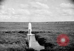 Image of cattle ranch United States USA, 1922, second 31 stock footage video 65675072784