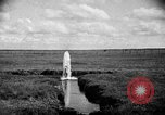 Image of cattle ranch United States USA, 1922, second 32 stock footage video 65675072784