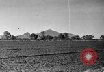 Image of Arizona landscape 1920s Arizona United States USA, 1920, second 17 stock footage video 65675072787