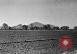 Image of Arizona landscape 1920s Arizona United States USA, 1920, second 19 stock footage video 65675072787