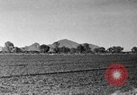 Image of Arizona landscape 1920s Arizona United States USA, 1920, second 20 stock footage video 65675072787