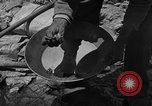 Image of gold panning Arizona United States USA, 1920, second 28 stock footage video 65675072790