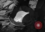 Image of gold panning Arizona United States USA, 1920, second 40 stock footage video 65675072790
