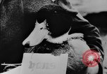 Image of Christmas celebration Germany, 1943, second 21 stock footage video 65675072798