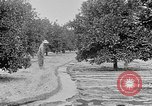 Image of gold panning Leadville Colorado USA, 1922, second 56 stock footage video 65675072890