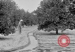 Image of gold panning Leadville Colorado USA, 1922, second 57 stock footage video 65675072890