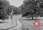 Image of gold panning Leadville Colorado USA, 1922, second 58 stock footage video 65675072890