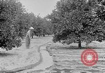 Image of gold panning Leadville Colorado USA, 1922, second 60 stock footage video 65675072890