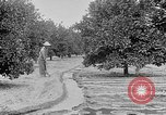 Image of gold panning Leadville Colorado USA, 1922, second 61 stock footage video 65675072890
