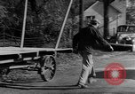 Image of Presidential election United States USA, 1944, second 38 stock footage video 65675072899