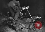 Image of Nazi atrocities in World War 2 Germany, 1945, second 38 stock footage video 65675072907