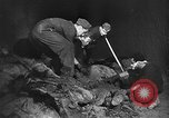 Image of Nazi atrocities in World War 2 Germany, 1945, second 40 stock footage video 65675072907