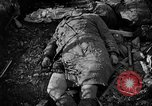 Image of Nazi atrocities in World War 2 Germany, 1945, second 57 stock footage video 65675072907