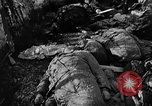 Image of Nazi atrocities in World War 2 Germany, 1945, second 58 stock footage video 65675072907