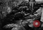 Image of Nazi atrocities in World War 2 Germany, 1945, second 59 stock footage video 65675072907