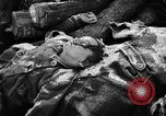 Image of Nazi atrocities in World War 2 Germany, 1945, second 61 stock footage video 65675072907