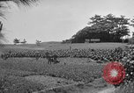 Image of Ryukyu Campaign Pacific Theater, 1945, second 46 stock footage video 65675072980